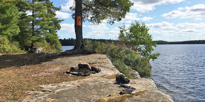 McIntosh Lake – Campsite #7