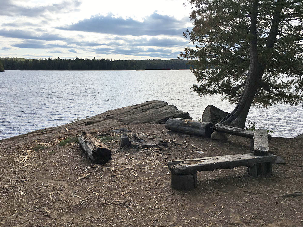 Main fire pit and seating area on McIntosh Lake campsite in Algonquin Park