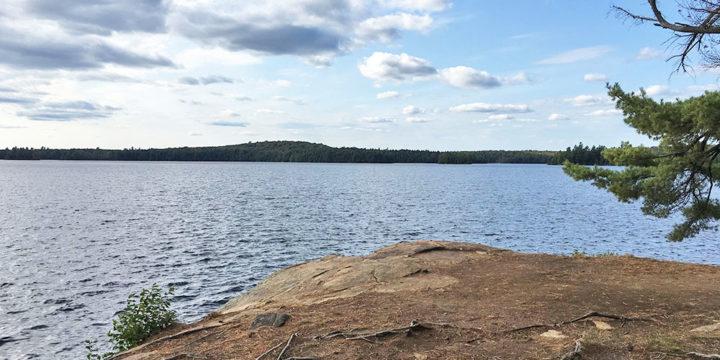 McIntosh Lake – Campsite #17