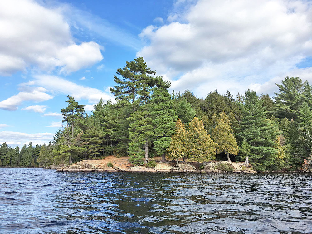 View from the water of campsite #17 on McIntosh Lake in Algonquin Park