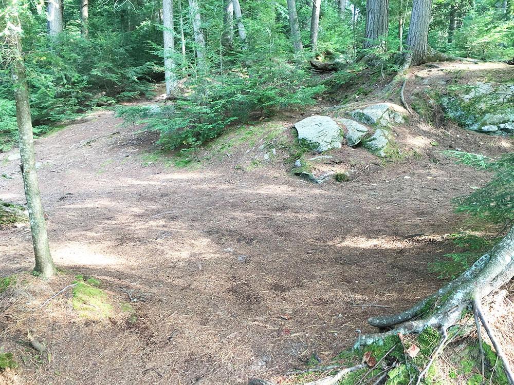 McIntosh Lake campsite #17 tent spot option