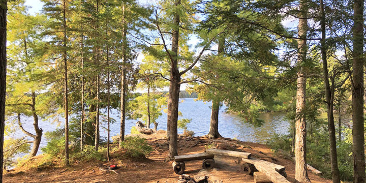 McIntosh Lake – Campsite #16