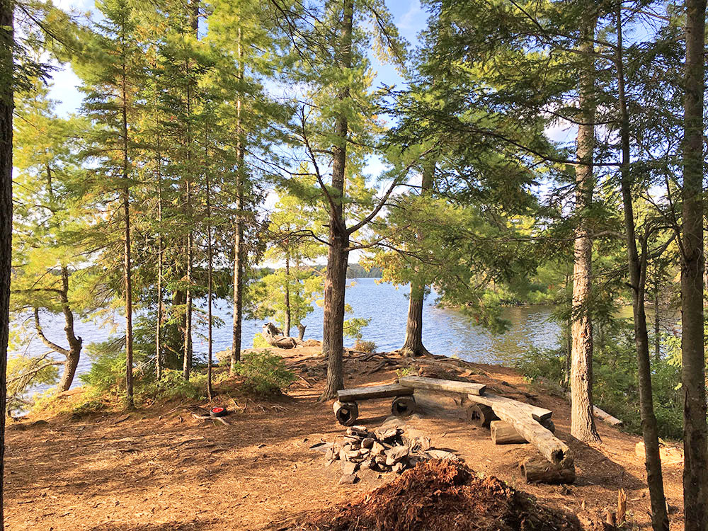 Interior of campsite #17 on McIntosh Lake