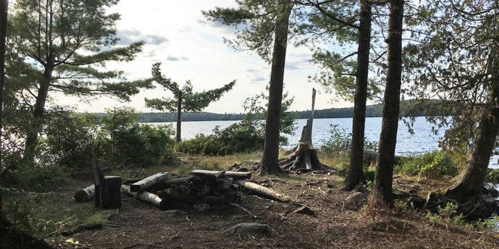 McIntosh Lake – Campsite #15