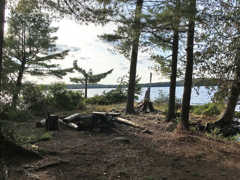 Interior of campsite #14 on McIntosh Lake