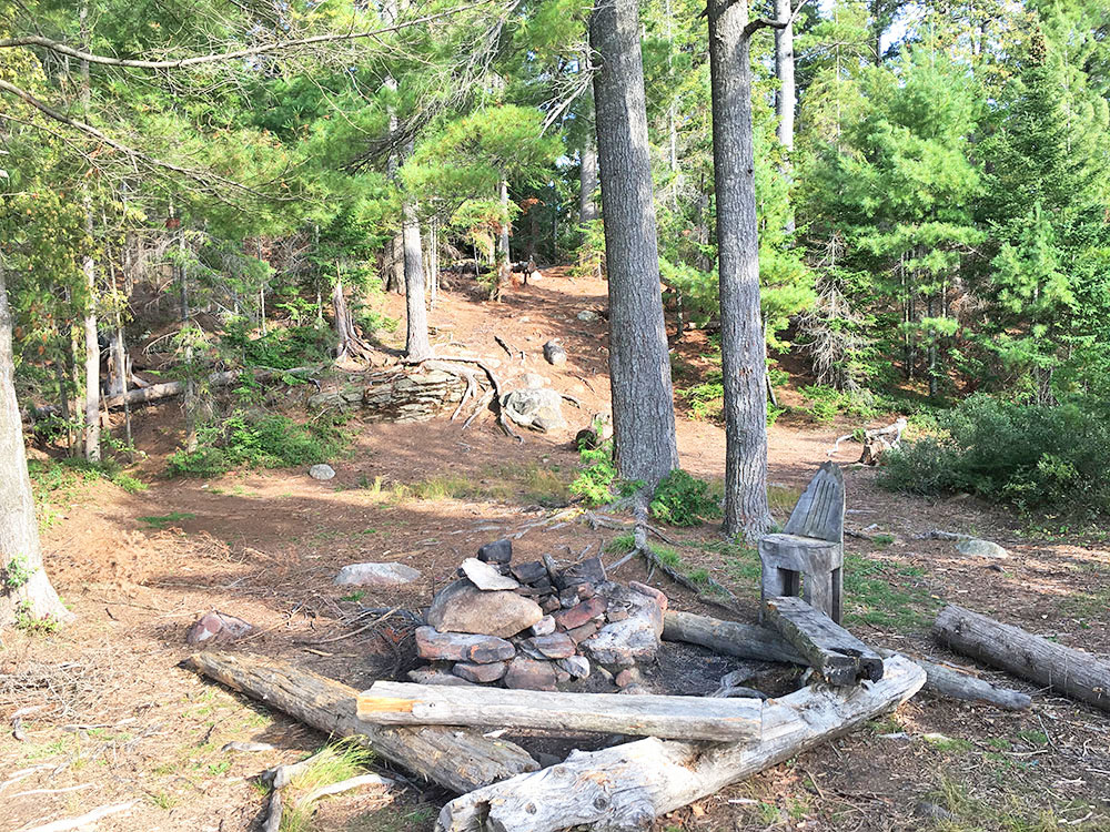 Looking into the interior of campsite #14 on McIntosh Lake in Algonquin Park