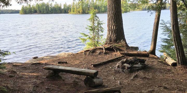 McIntosh Lake – Campsite #14