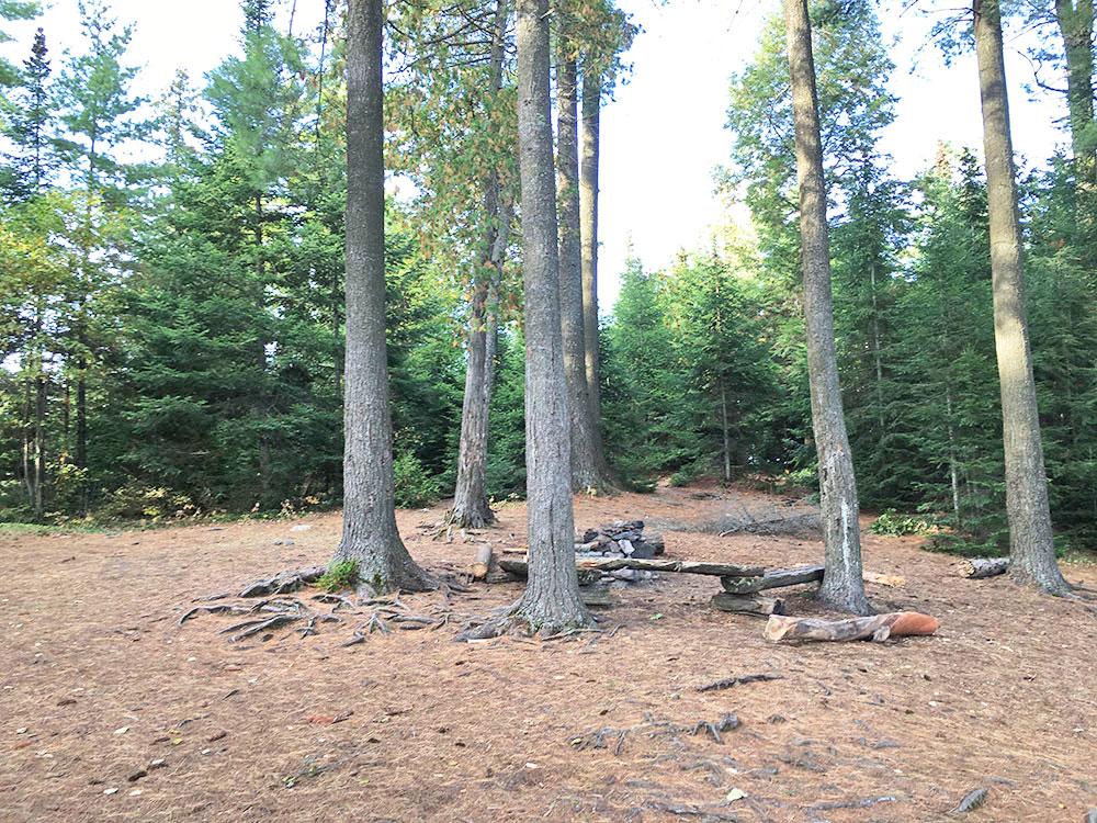 Interior of campsite #11 on McIntosh Lake in Algonquin Park