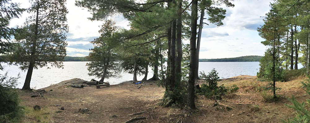 Panoramoa view of the interior of campsite #17 on McIntosh Lake