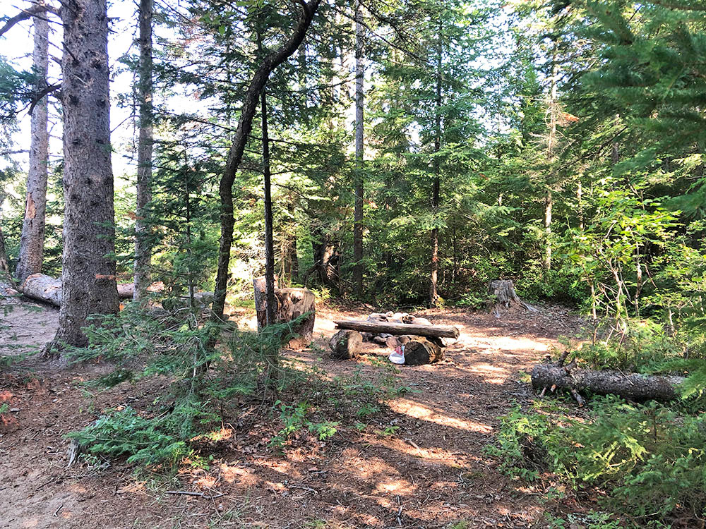 Looking into campsite #1 on Harry Lake
