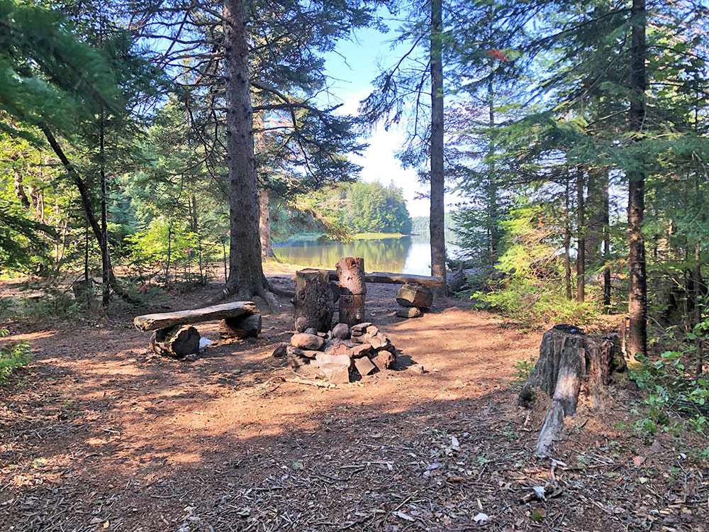 Fire pit and seating area of Harry Lake campsite #1