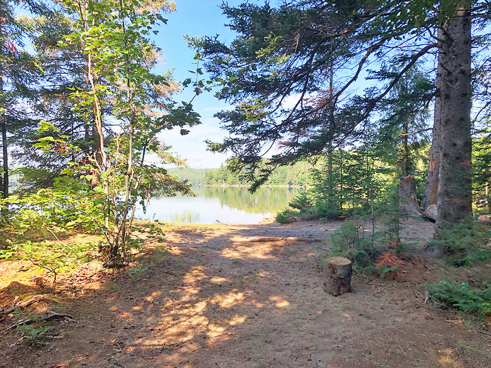 Path towards the water on Harry Lake campsite #1