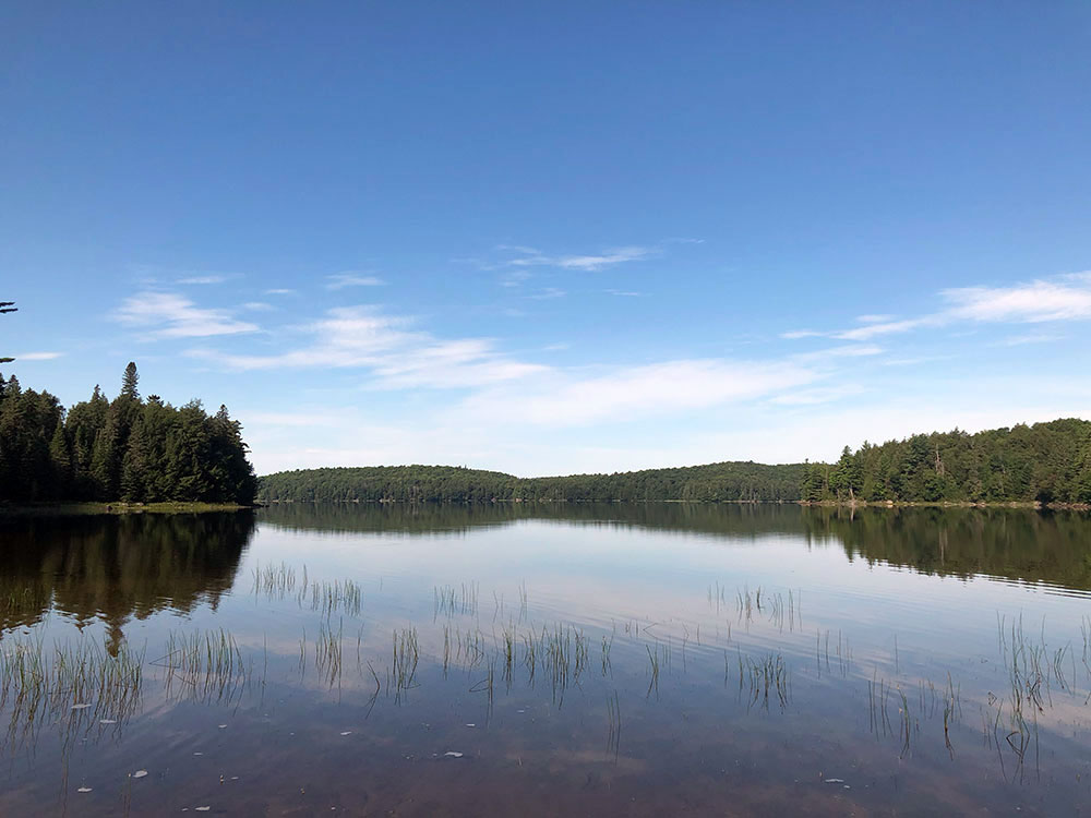 View of our Harry Lake campsite onto the water