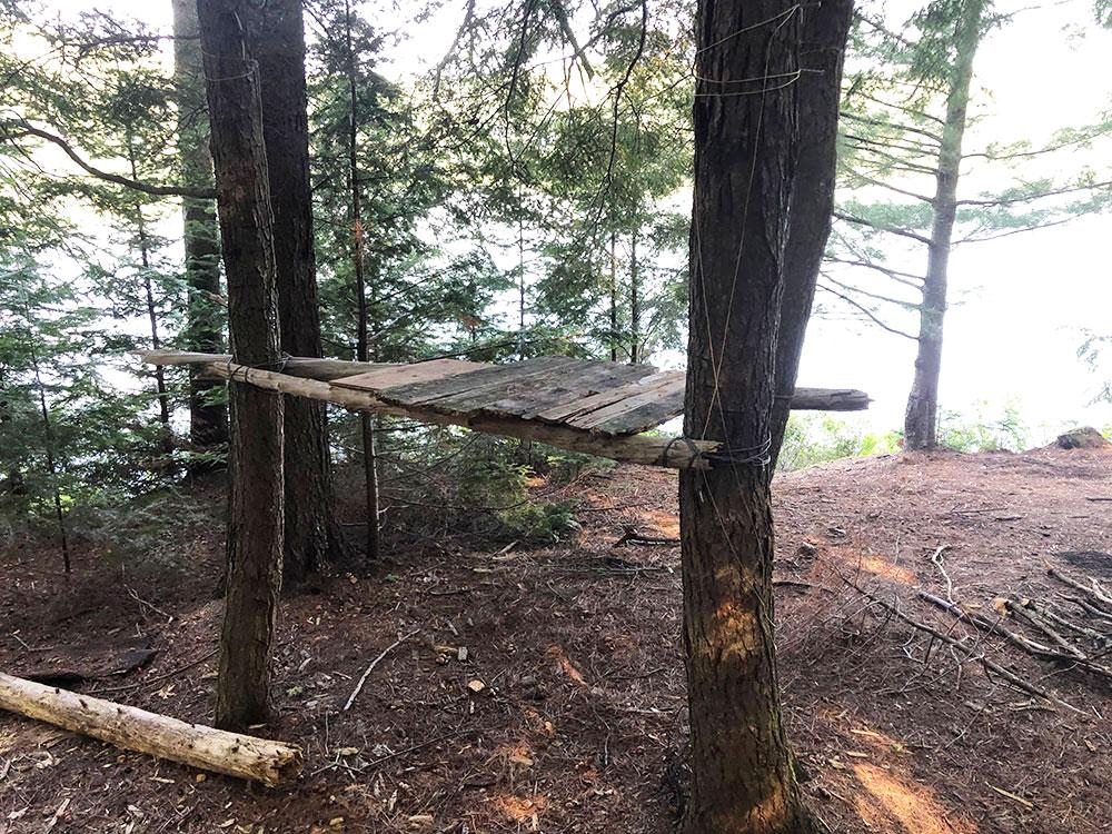 Kitchen shelf on campsite #2 on Harry Lake