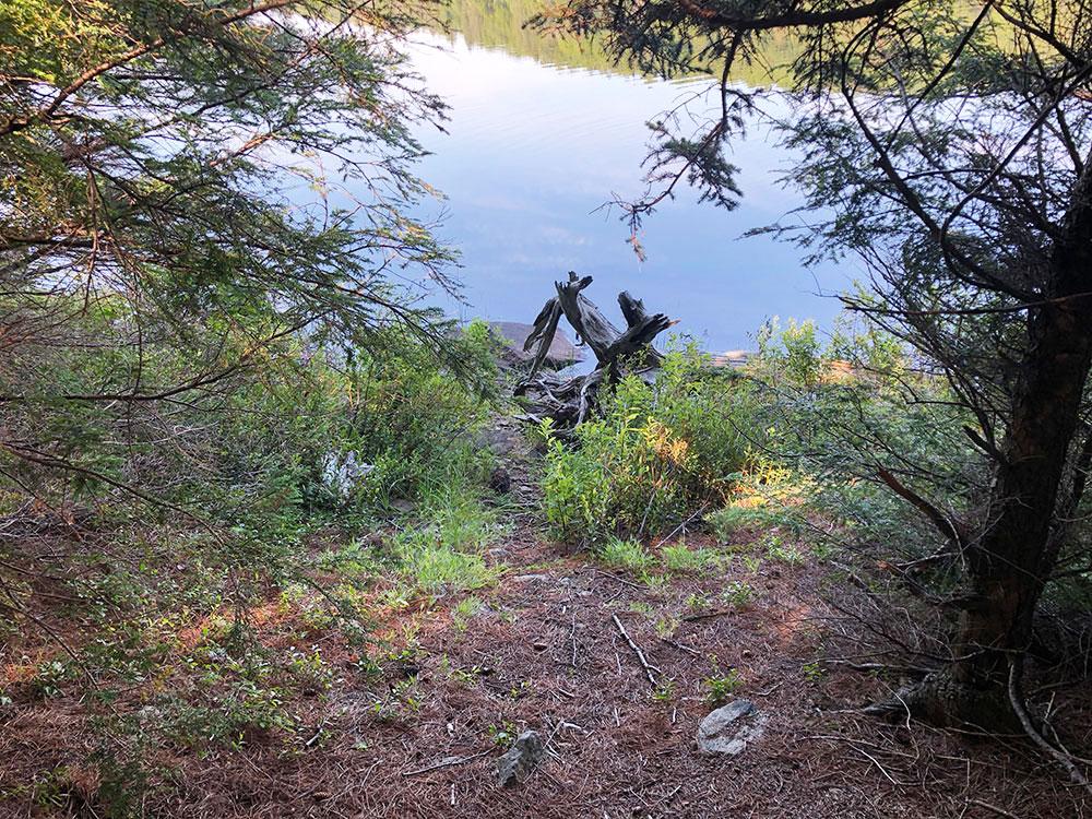 Poor canoe landing on Harry Lake campsite