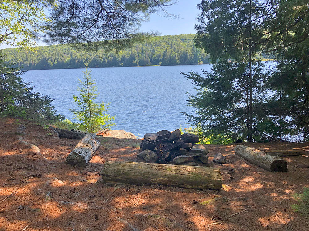 Fire pit and seating area for campsite #10 on Lake Louisa in Algonquin Park