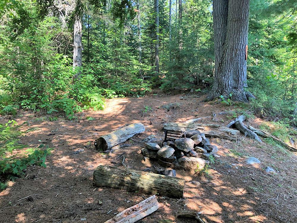 Interior of campsite #10 on Lake Louisa in Algonquin