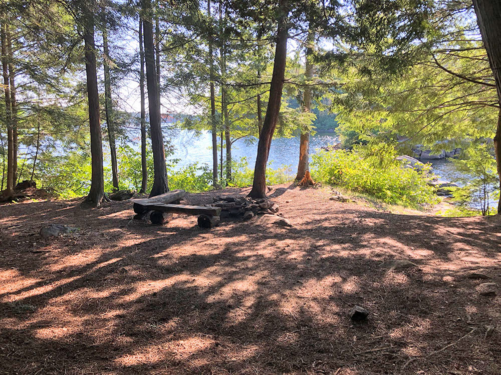 Interior of campsite #14 on Lake Louisa in Algonquin Park