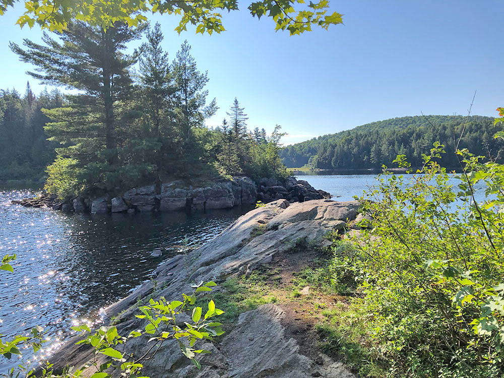 Rocky shoreline with small island in front of campsite #14 on Lake Louisa