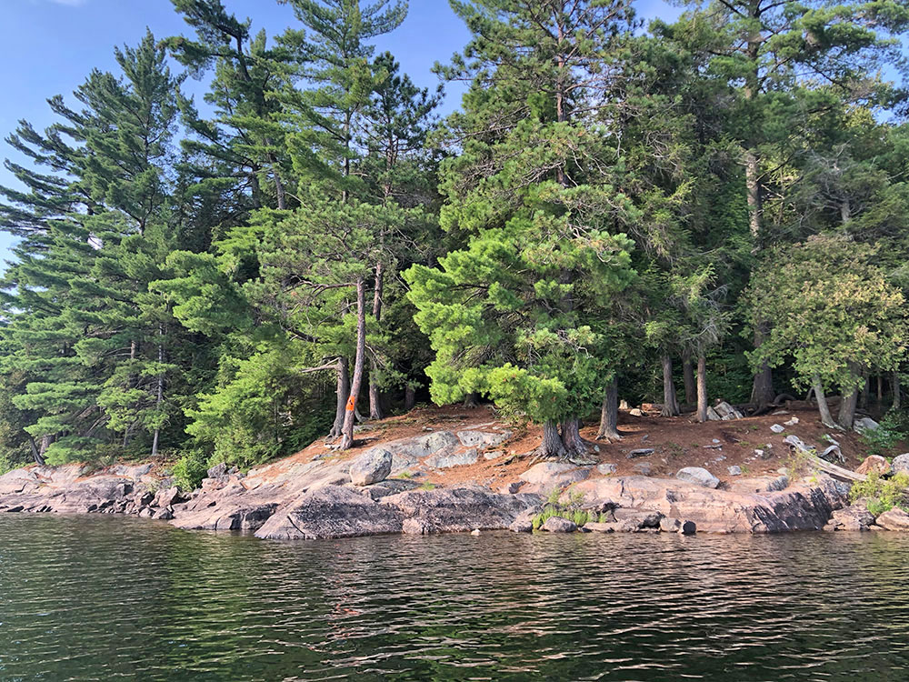 View of campsite #19 on Lake Louisa from the water