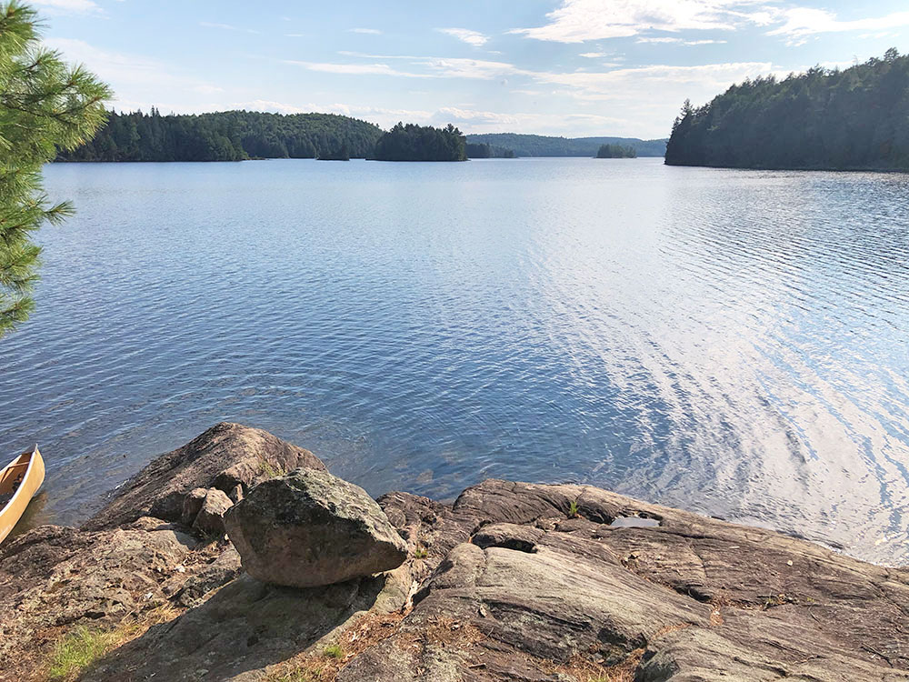 View out onto the water from campsite #19 on Lake Louisa in Algonquin