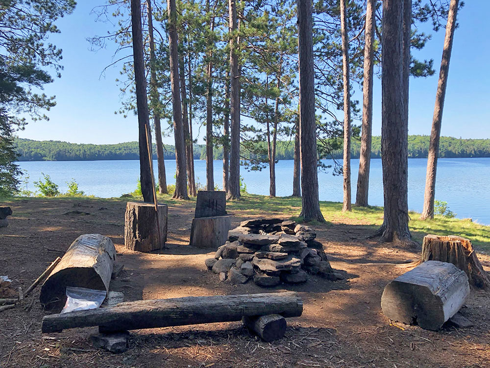 Fire pit and seating area on Lake Louisa campsite #3