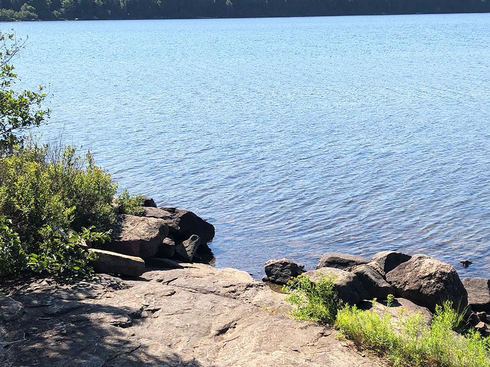 Canoe landing on Lake Louisa campsite #4 in Algonquin Park