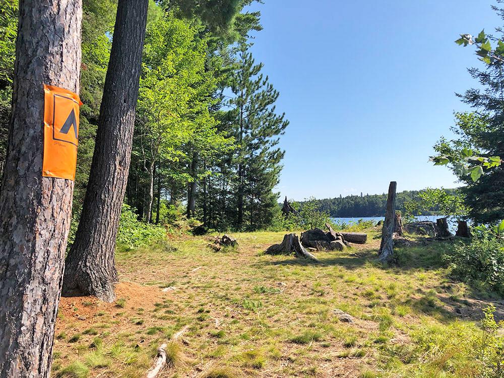 Interior of campsite #4 on Lake Louisa in Algonquin