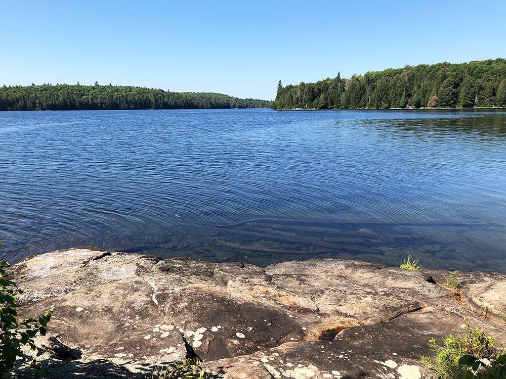 Rocky shoreline of Lake Louisa campsite #4