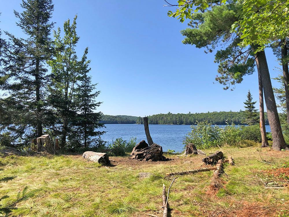 Interior of campsite #4 on Lake Louisa looking west