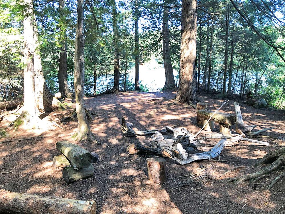 Interior of campsite #6 on Lake Louisa in Algonquin