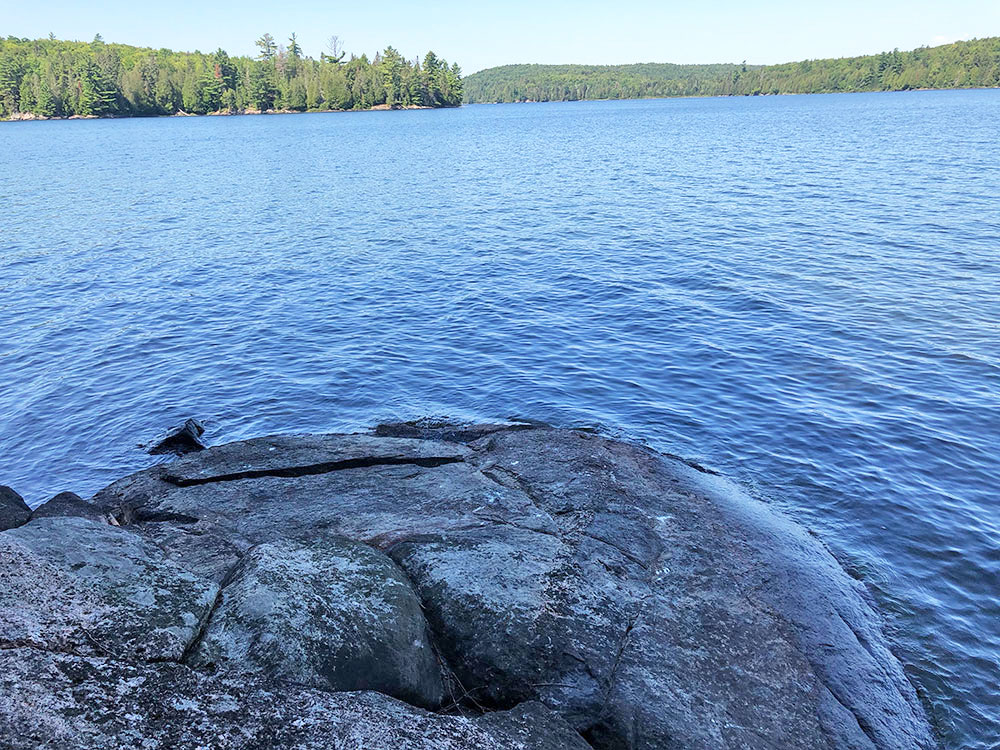 Rocky shoreline on campsite #7 Lake Louisa in Algonquin Park