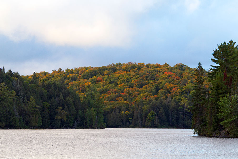 Fall colours on Little Otterslide Lake view from campsite