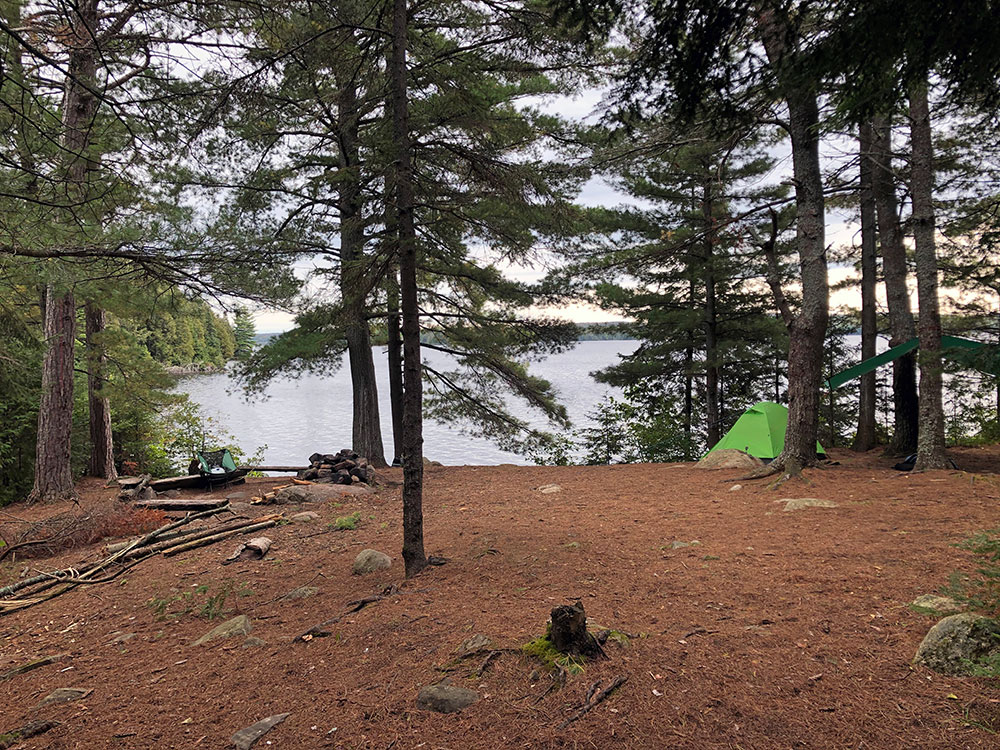 Island campsite in the middle of Big Trout Lake during a solo trip in Algonquin