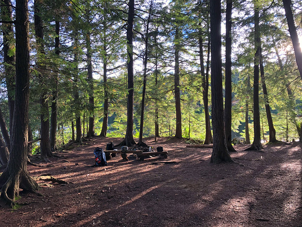 Island campsite on Big Trout Lake during solo trip in September