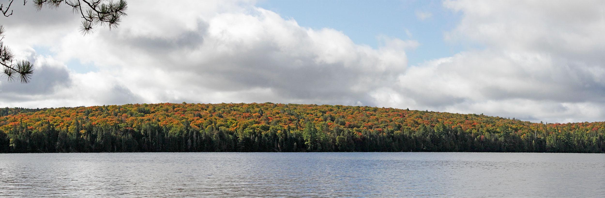 Panorama of Burnt Island Lake shoreline with beautiful fall colours