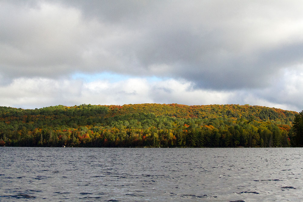 Shoreline on Burnt Island Lake starting to show fall colours Sept 17