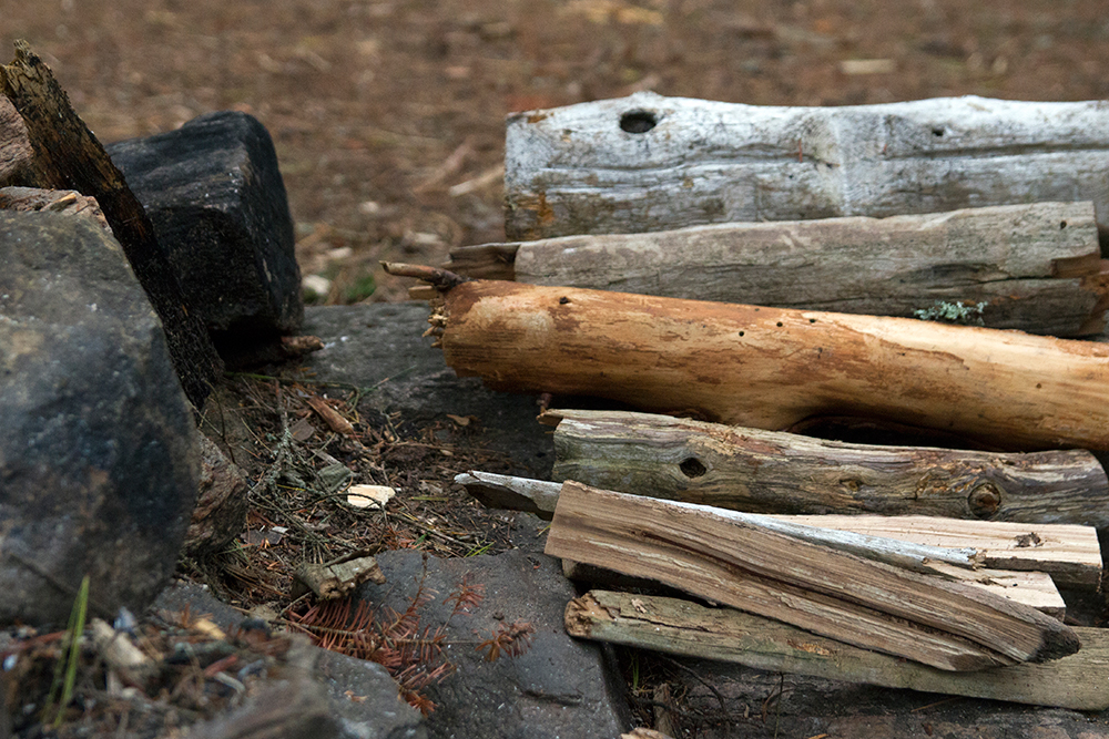 Wood collection for a morning fire on Big Trout Lake island campsite