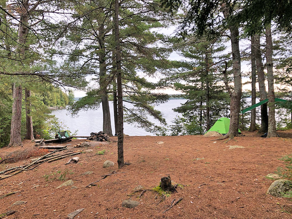 Interior of campsite #11 on Big Trout Lake looking east