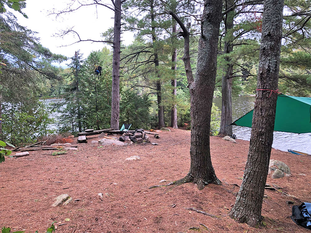Interior of campsite #11 on Big Trout Lake looking north