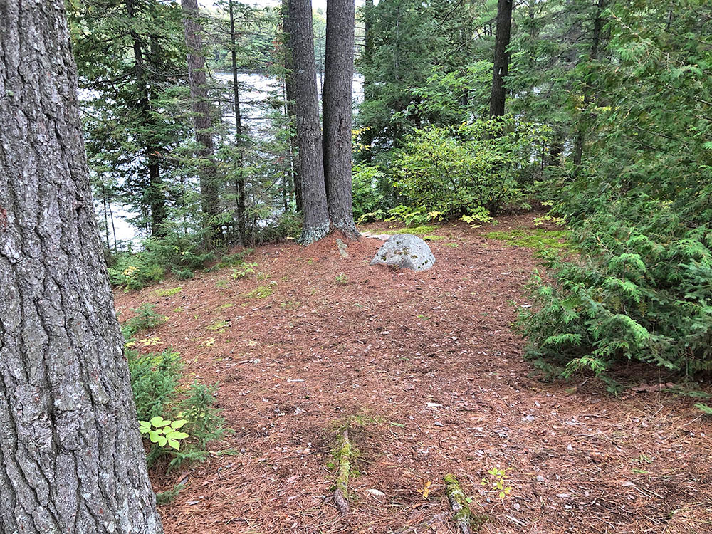 Small tent spot on the west end of the island on campsite #11 on Big Trout Lake