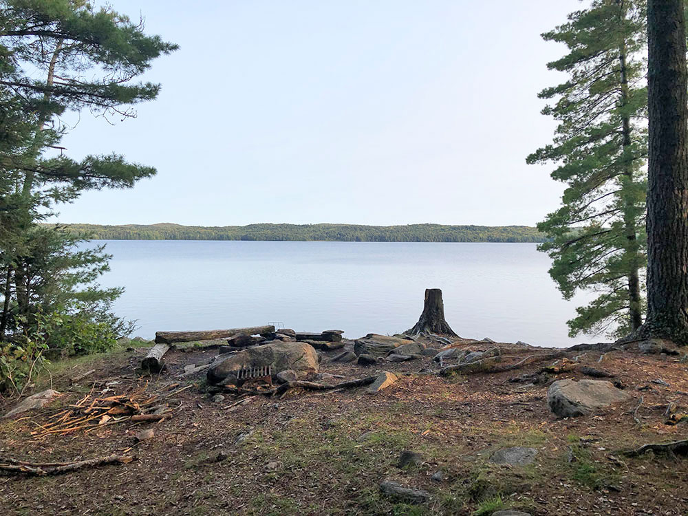 Interior of campsite #13 with a view east down the lake of Big Trout Lake in Algonquin