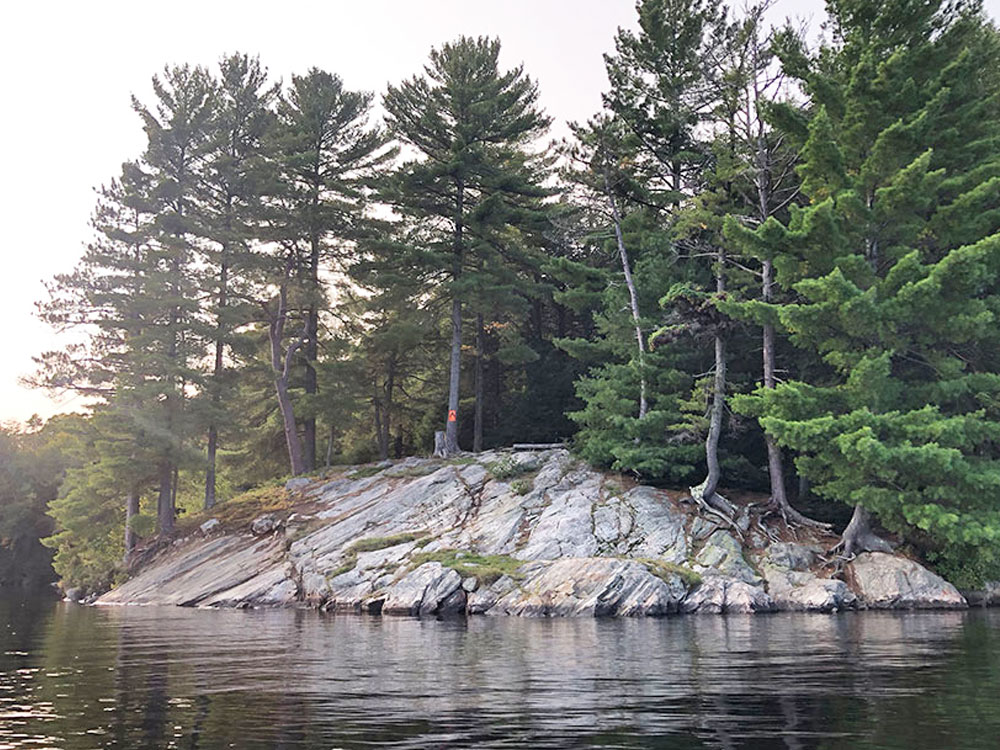 View of the campsite #13 from the water on Big Trout Lake in Algonquin Park