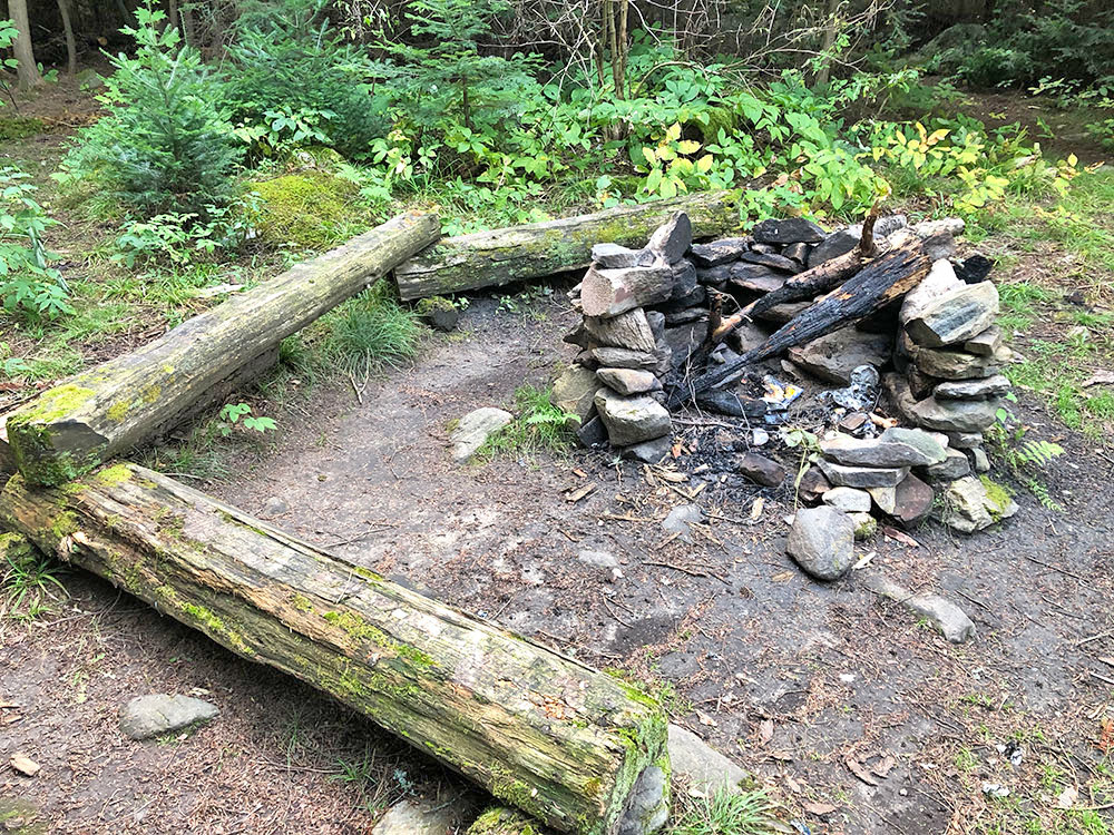 Overgrown fire pit and seating area on Big Trout Lake campsite #14