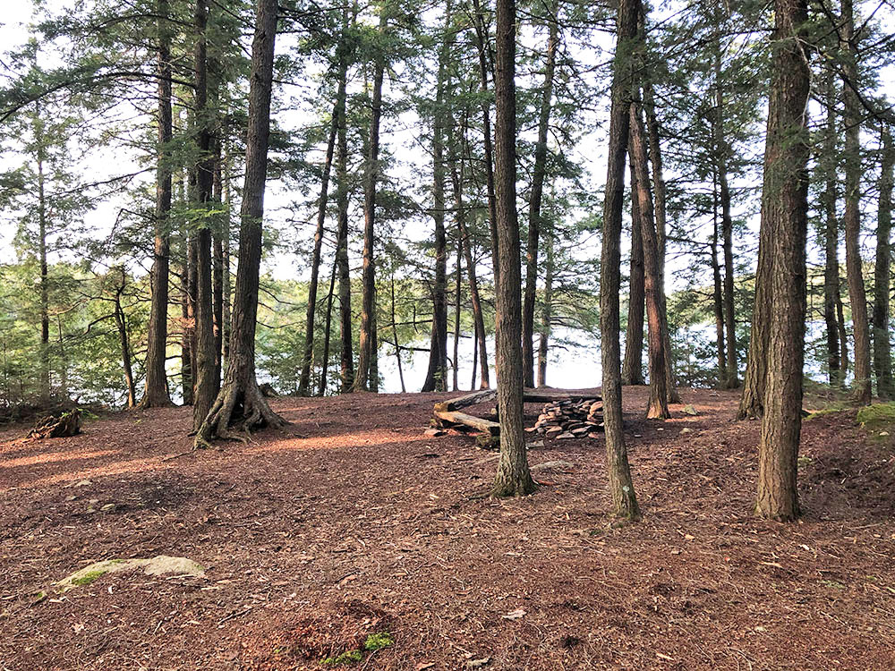 Large open interior of Campsite #15 on Big Trout Lake in Algonquin Park