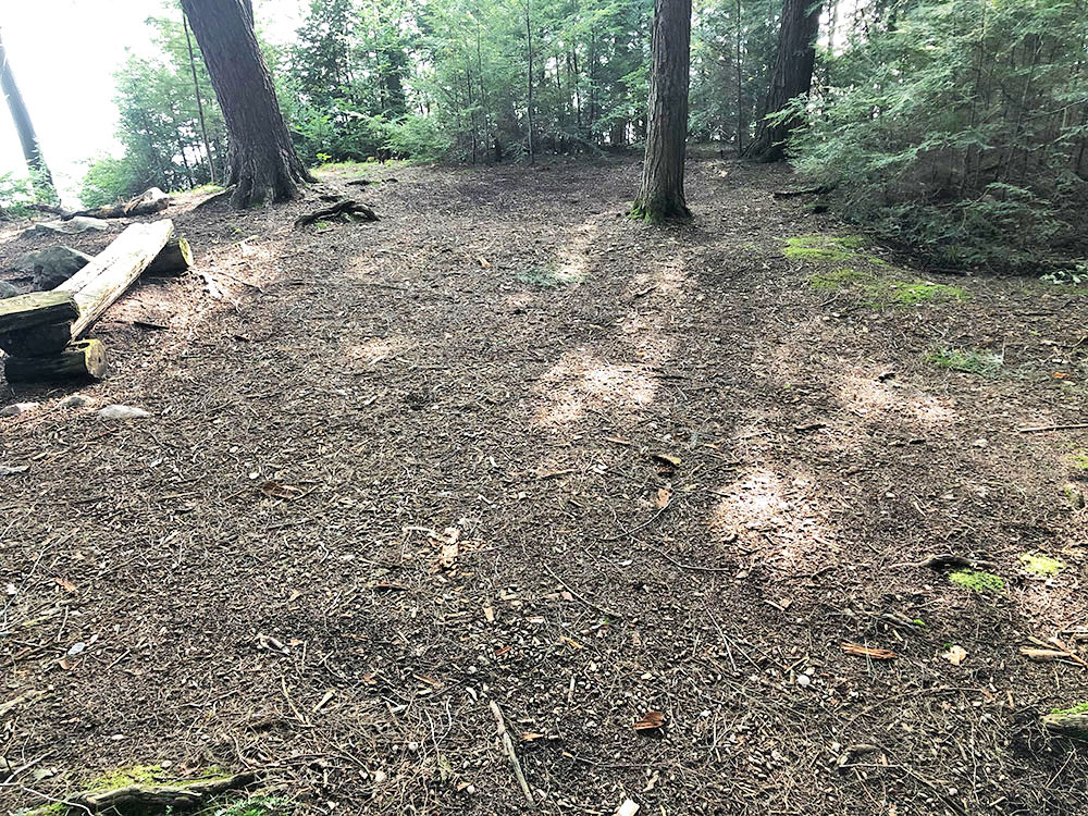 Large area to pitch multiple tents on Big Trout Lake Campsite #16