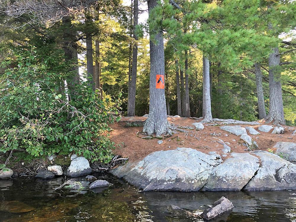 Rocky shoreline canoe landing on Big Trout Lake campsite #22