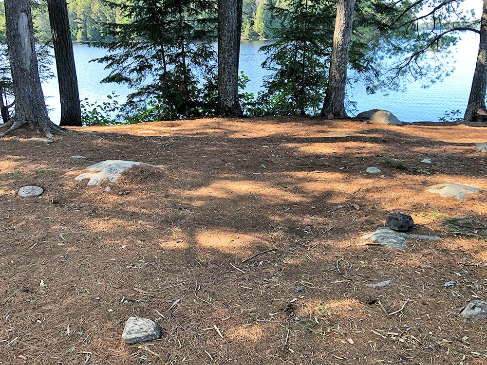 Tent spot with some rocks sticking out of the ground on Big Trout Lake campsite #22