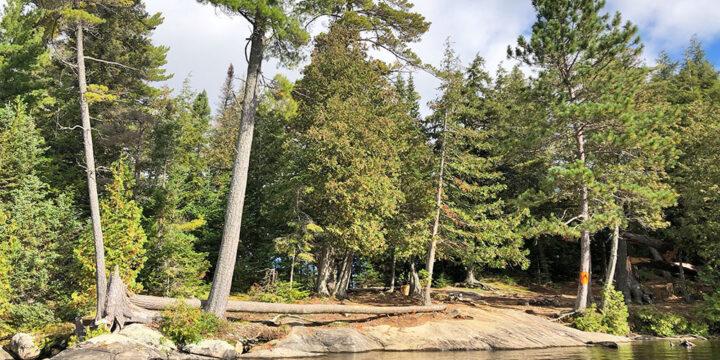 Burnt Island Lake – Campsite #28