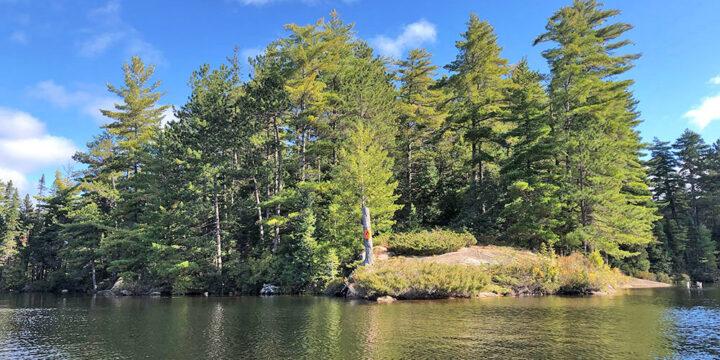 Burnt Island Lake – Campsite #37